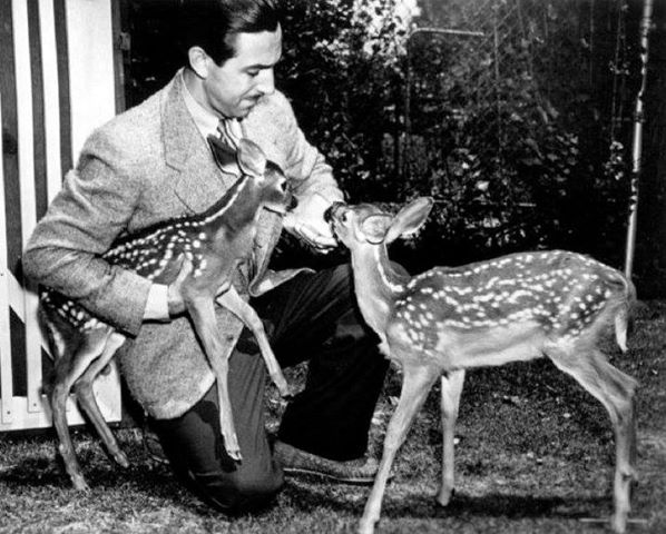 Walt Disney and Bambi